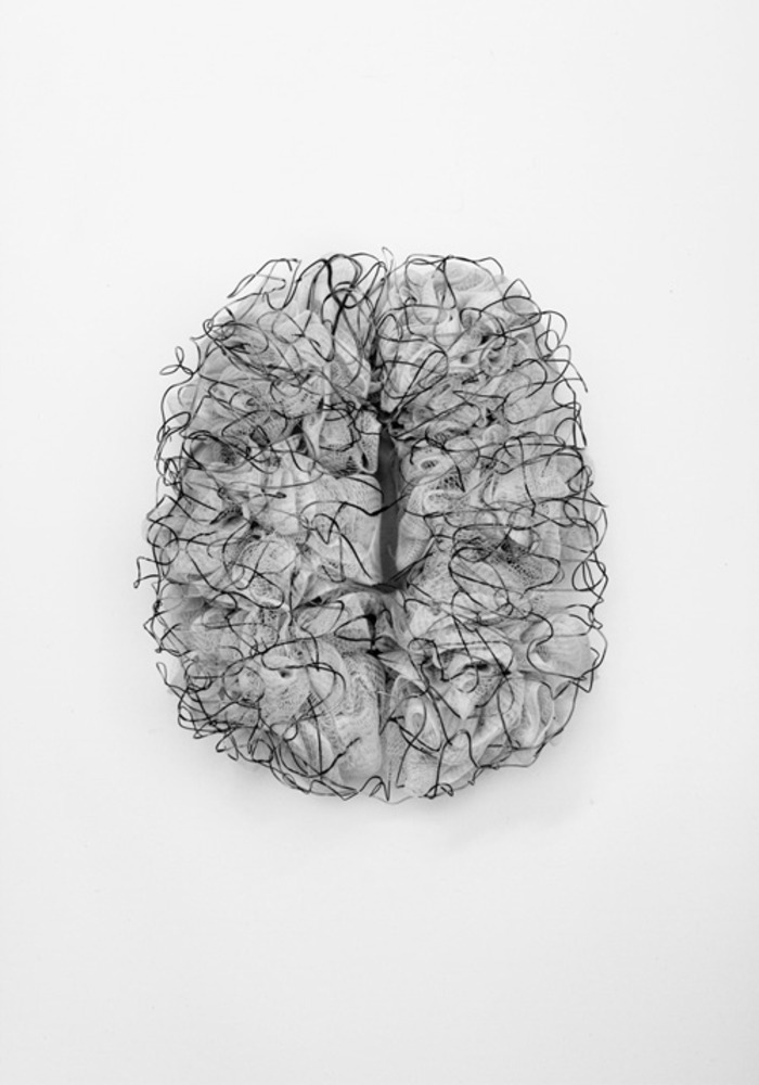 Large carolin wanitzek brain