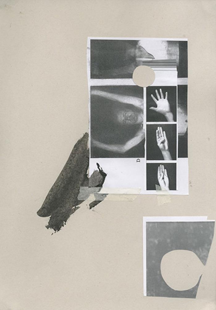 Large  1   limbs   collage  2014  fran gordon