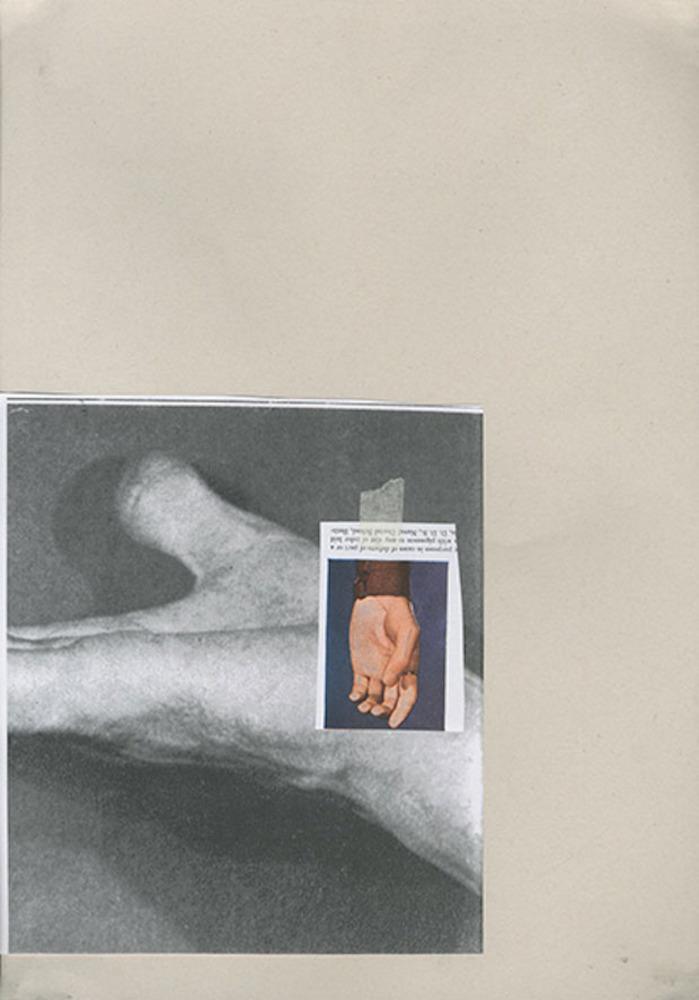 Large  2   limbs  collage  2014  fran gordon