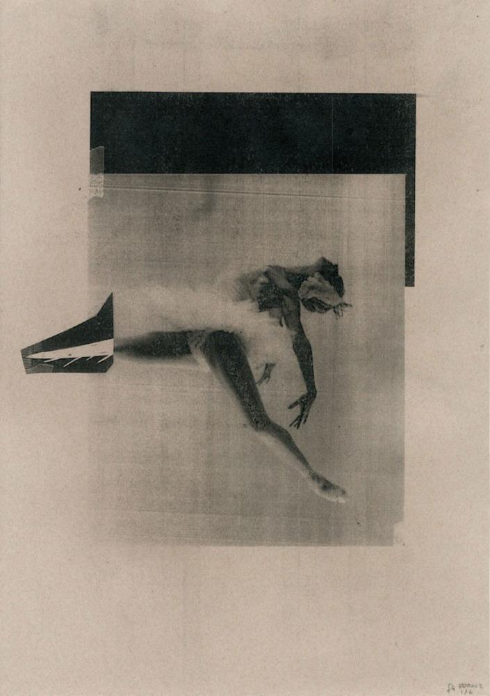 Large  2   metamorphosis   from book   digital print  2012  fran gordon