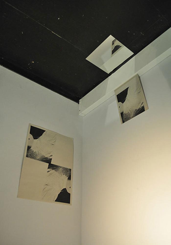 Large  3   two methods  installation view  screenprint  mountboard  mirror  2014  fran gordon