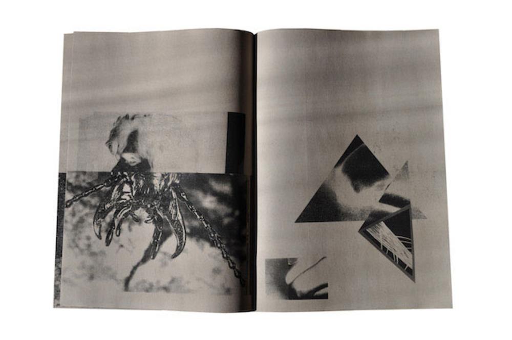 Large  metamorphosis   from book   digital print  2012  fran gordon