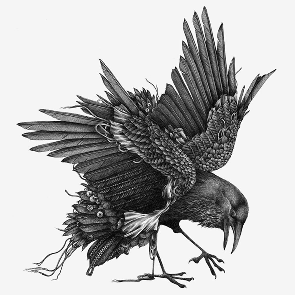Line Drawing Raven : Dark arts grafik