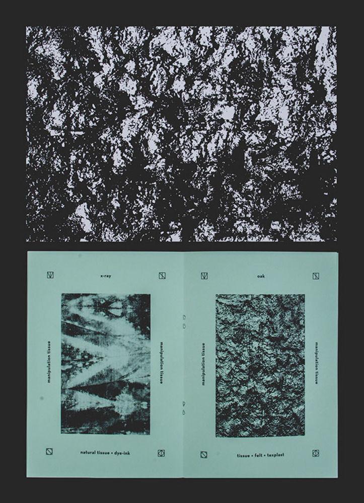 Large manipulation tissue  raquel peixoto  2013  3